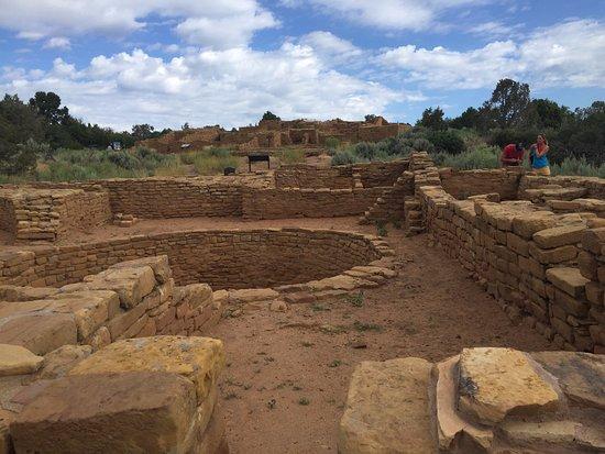 Mancos, CO : One of many ruins at Mesa Verde