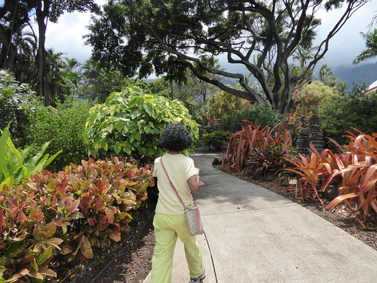 Wailuku, Hawaje: Walking path
