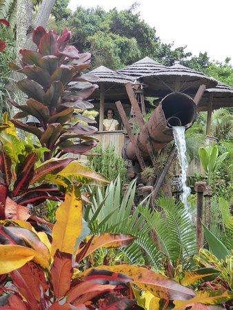 Wailuku, Hawaje: Maui Tropical Plantation