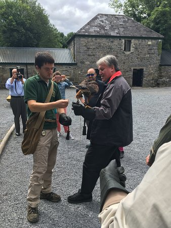 Cong, Irland: Irelands School of Falconry