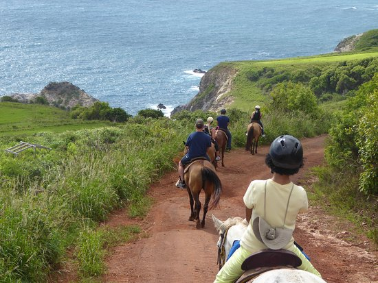 Wailuku, Hawaje: Coastal trail