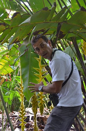 Prowincja Guanacaste, Kostaryka: Diego taught us so much about the plants, wildlife and culture. There isn't anyone more dedicate