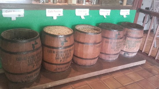 Vieux-Habitants, Guadalupe: Cafe Chaulet - Musee du Cafe