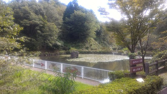 Minokamo, Japan: 園内にある「あじさいの池」