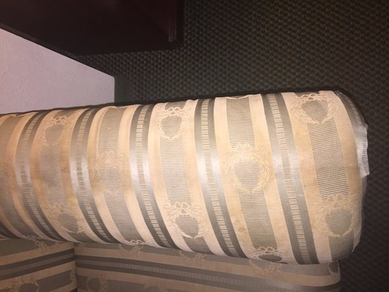 Wingate by Wyndham Dallas Love Field: made sure i stayed away from this couch