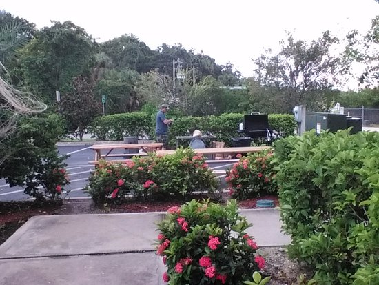 Country Inn & Suites By Carlson, Bradenton at I-75: BBQ Area & Tables Behind Pool