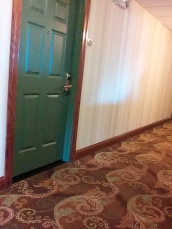 Country Inn & Suites By Carlson, Bradenton at I-75: Nice carpeting in halls and well kept building.