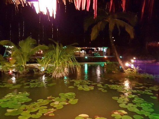 Te Vara Nui Village: 20160823_185616_large.jpg