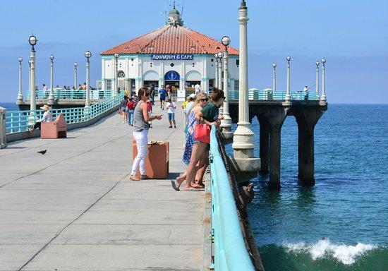 แมนฮัตตันบีช, แคลิฟอร์เนีย: people enjoy to watch people from the pier.