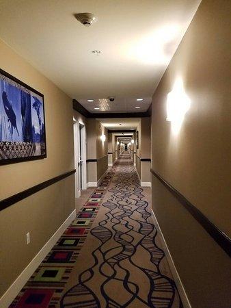 Cypress Bayou Casino Hotel: 20160827_204723_large.jpg