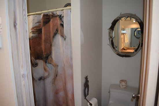 Hot Springs Inn: Never had horses in my bathroom before - fun!