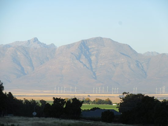 Riebeek-West, แอฟริกาใต้: View from the room