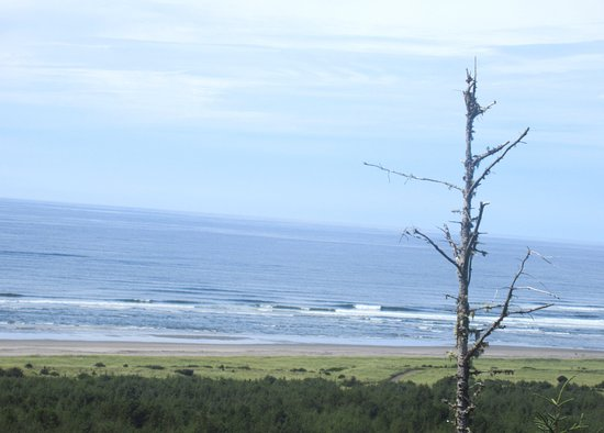Ilwaco, WA: Cape Disappointment State Park, Washington