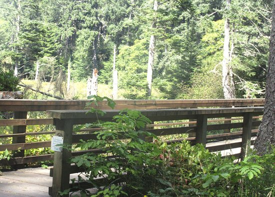 Ilwaco, Etat de Washington : Discovery Trail, Cape Disappointment State Park, Washington