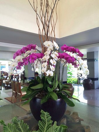 The Breezes Bali Resort & Spa: photo1.jpg