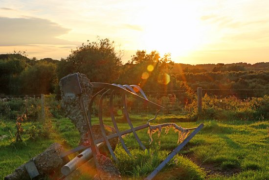 Llanddeiniolen, UK: Sunset over fields at end of the T'yn Rhos Gardens
