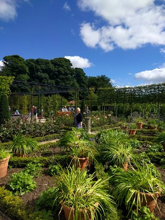 The Alnwick Garden: IMG_20160829_112632_large.jpg