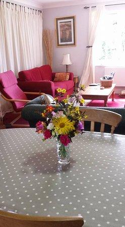 Durrus, Ierland: Guest lounge
