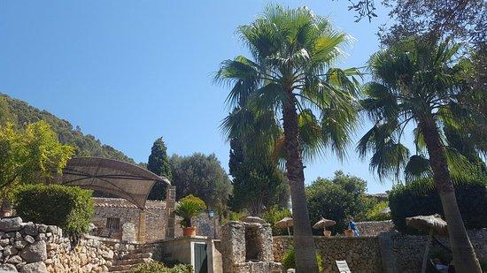 Finca Es Castell: 20160827_123016_large.jpg