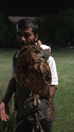Al Ain Zoo: photo0.jpg
