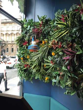 Barburrito Queen St: Plant Feature Wall