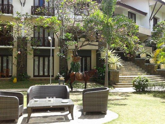 Novotel Surabaya Hotel and Suites Image