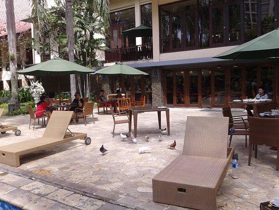 Nice Spot At Garden  Foto Novotel Surabaya Hotel And. Hotel & Spa S´Entrador Playa. The Chesterfield Mayfair Hotel. Sport V Hotel. Acropolis Marina Hotel. Hillwatering Country House Hotel. Tepi Sawah Villas & Spa Hotel. Lagos Mare Hotel. Casa Natalia Hotel