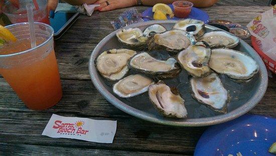 Hudson, FL: IMAG0398_large.jpg