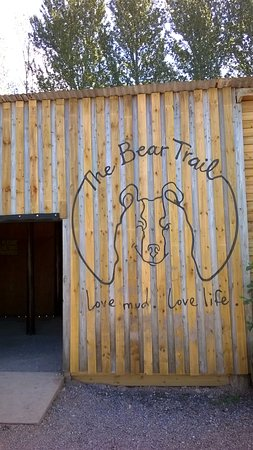 Cullompton, UK: bear trail logo