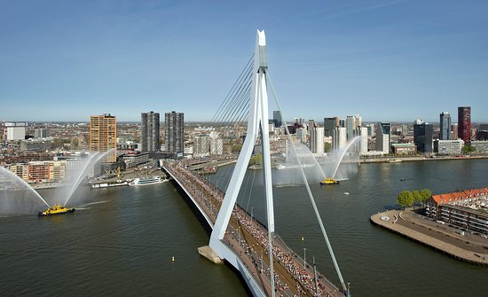 Hotels Near Erasmus University Rotterdam
