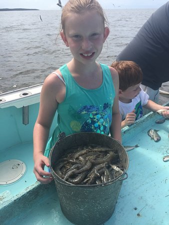 Wanchese, Carolina del Norte: We had an amazing time going shrimp and crabbing with Grandpa's Charters. We will definitely do