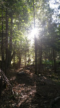 Dwight, Kanada: On one of the trails