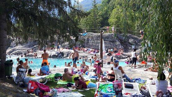 Deer picture of zoo et piscine des marecottes les for Les piscines
