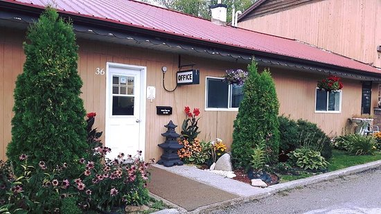 The Hawberry Motel: Beautiful flowers  and well kept gardens outside office.