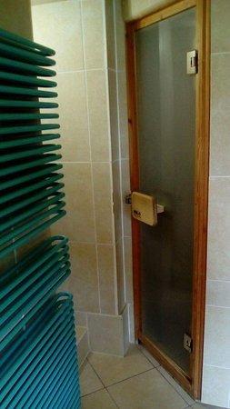 Shottle, UK: Sauna in the bathroom.