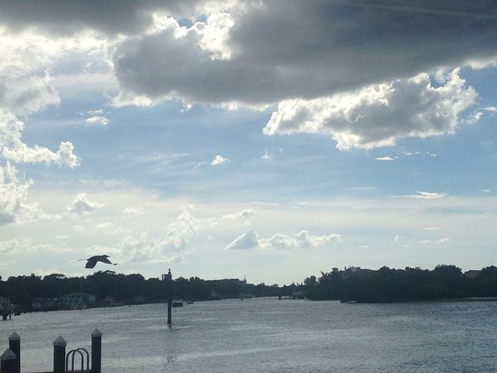 Port Richey, FL: The view