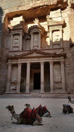 50aab826eea 20160814 081640 large.jpg - Picture of Jordan Select Tours