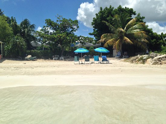 Buccaneer Beach Club: View of the beach including chairs and umbrellas provided by the hotel and setup by the staff