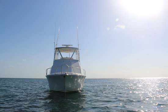 Placencia, Belice: Deep Blue Charters