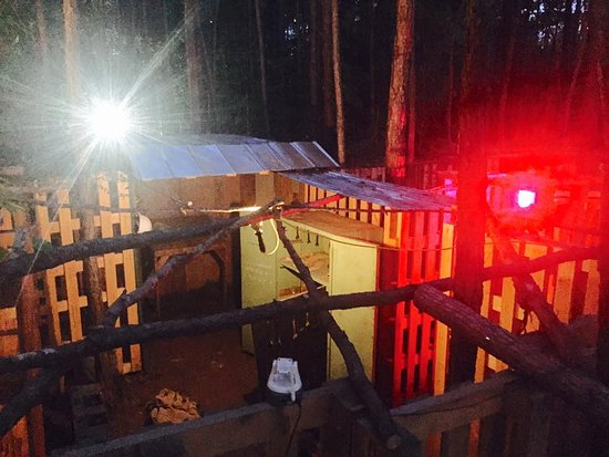 Powder Springs, GA: Escape Woods: The Dig at Night