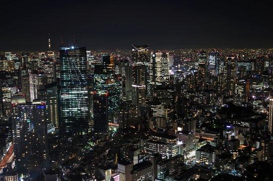 Seaside Top: Tokyo City View [東京シティビュー/スカイデッキ]