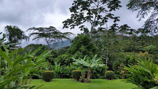 Фотография Volcano Lodge & Springs