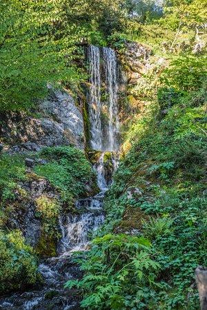 Entr e du jardin botanique photo de jardin botanique for Bd du jardin botanique 50