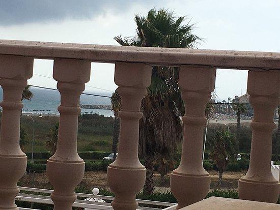 Las Camelias: photo1.jpg