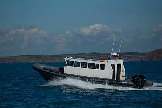 Shearwater Safaris: New boat