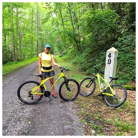 Marlinton, WV: Bike rentals available: comfort or Mtn bikes.