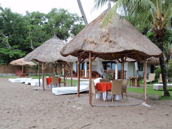 Pura Vida Beach & Dive Resort 이미지