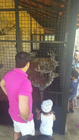 Broummana, Λίβανος: Snapchat-3913597478894231453_large.jpg