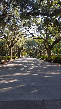 Parc Forsyth : Tree lined walkways