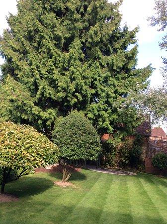 Lyndhurst, UK: photo5.jpg